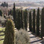 appartamento vendita Loc le Poggiola Arezzo35